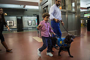 ARGENTINA-SUBWAY-DOGS-DISABLED
